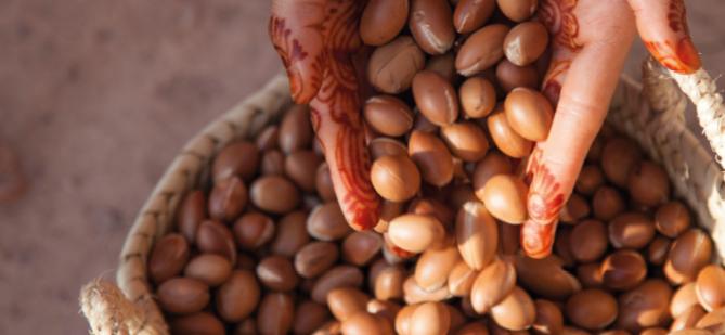 … procedente de Comercio Justo desde cooperativas de mujeres en el sud-oeste de Marruecos.