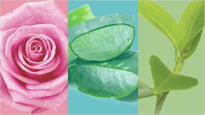 Gama botánica elaborada con ingredientes naturales