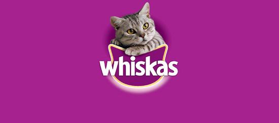 Whiskas es la marca de alimentación felina más conocida en España y la que más mininos alimenta en el mundo.